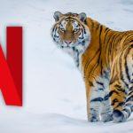 Dio Netflixovih dokumentaraca besplatno na YouTubeu